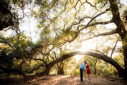 Thomas Riley Wilderness Park Orange County Engagement Photography