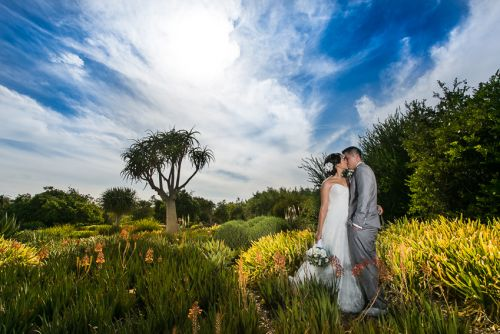 jv-los-angeles-aboretum-botanic-garden-wedding (256 of 1018)