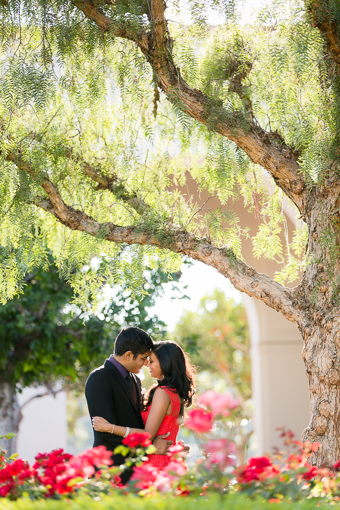 LL-mission-san-juan-engagement-photos-0015