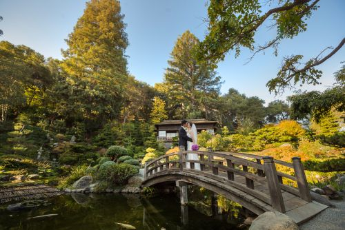0250-RJ-hakone-gardens-san-jose-wedding-photos