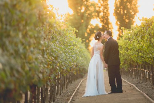 HL-Turnip-Rose-Garden-Orange-County-Vietnamese-Wedding (1056 of 1461)-2