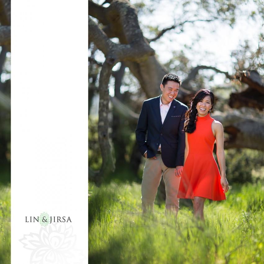 03-gorgeous-orange-county-outdoor-engagement-photos
