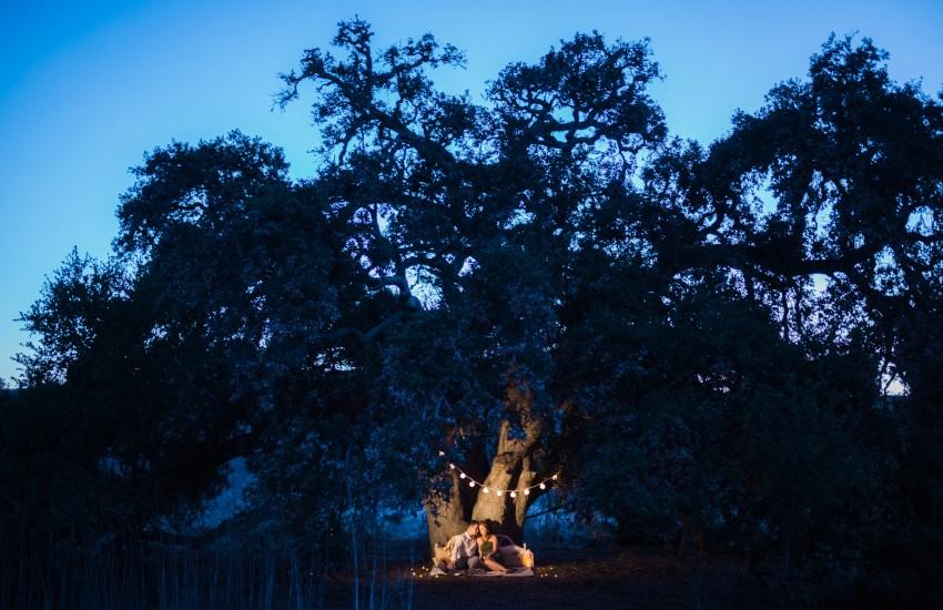 Thomas-F-Riley-Wilderness-Park-Engagement-Photos-2