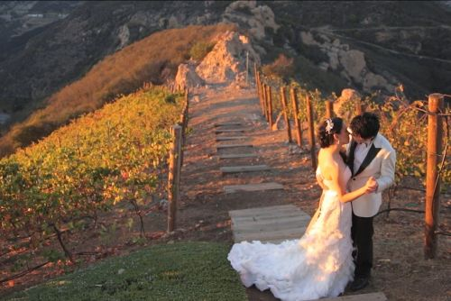 Malibu-rocky-oaks-vineyard-wedding-cinema