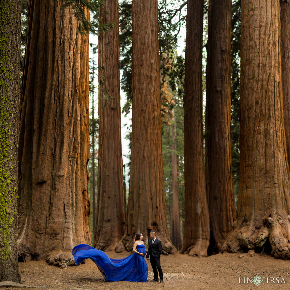 06-Sequoia-National-Park-Maternity-Session-Photography