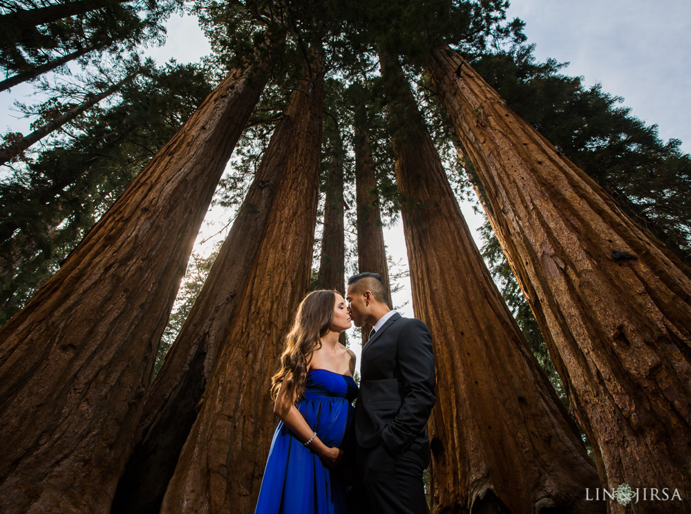 07-Sequoia-National-Park-Maternity-Session-Photography