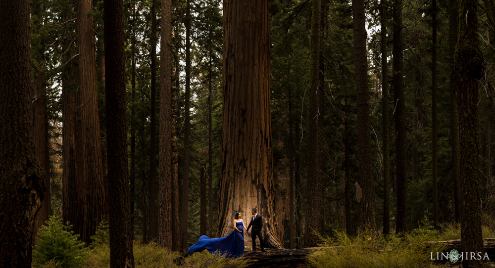 08-Sequoia-National-Park-Maternity-Session-Photography