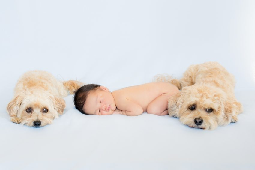0012-YJ-Orange-County-Newborn-Photography