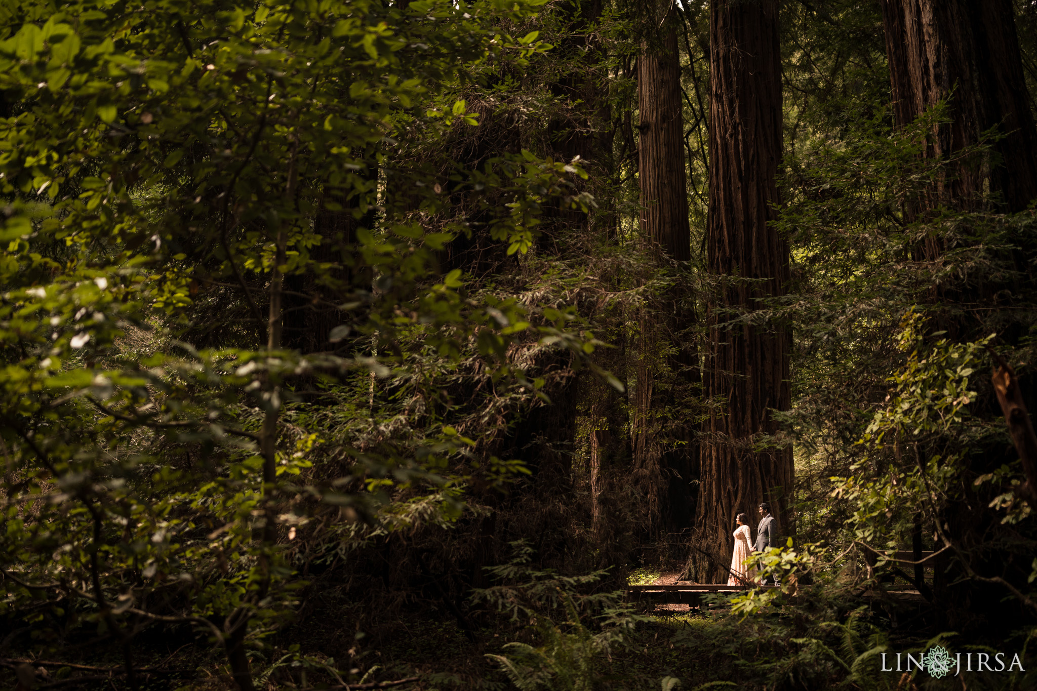 05-San-francisco-muir-woods-marin-county-engagement-photography