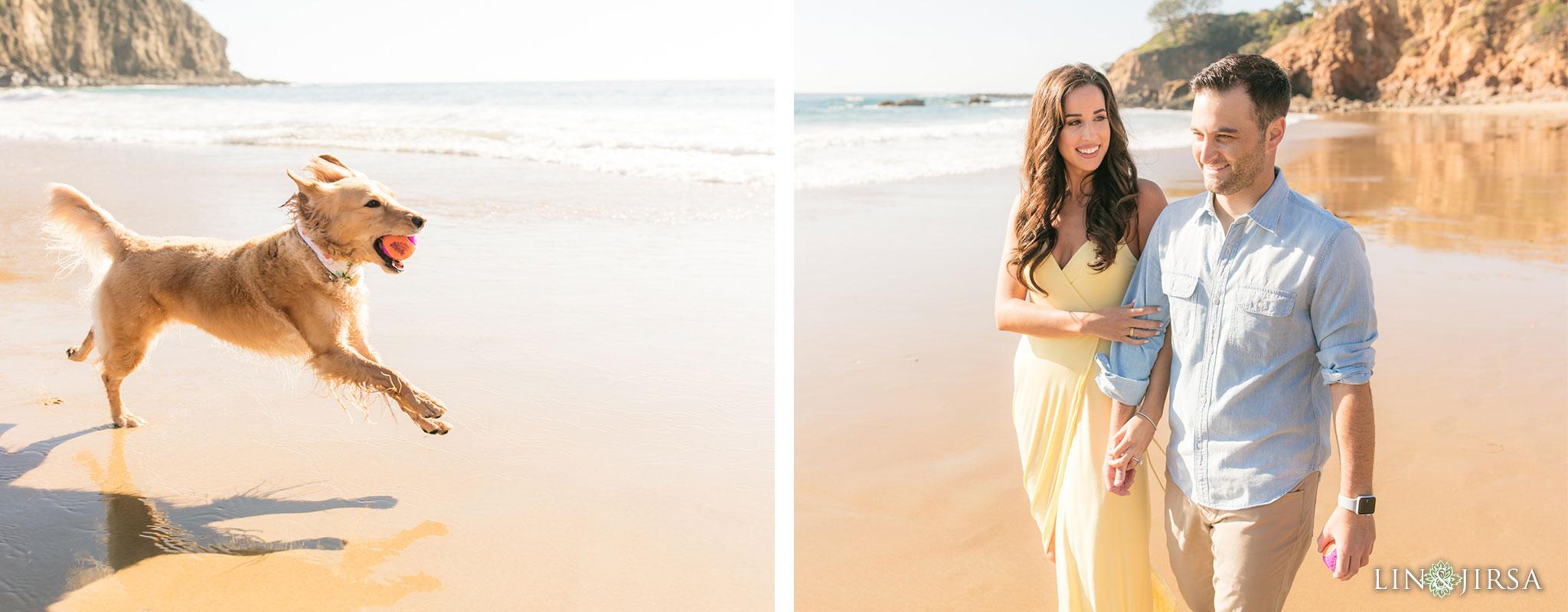 orange county beach dog engagement photography