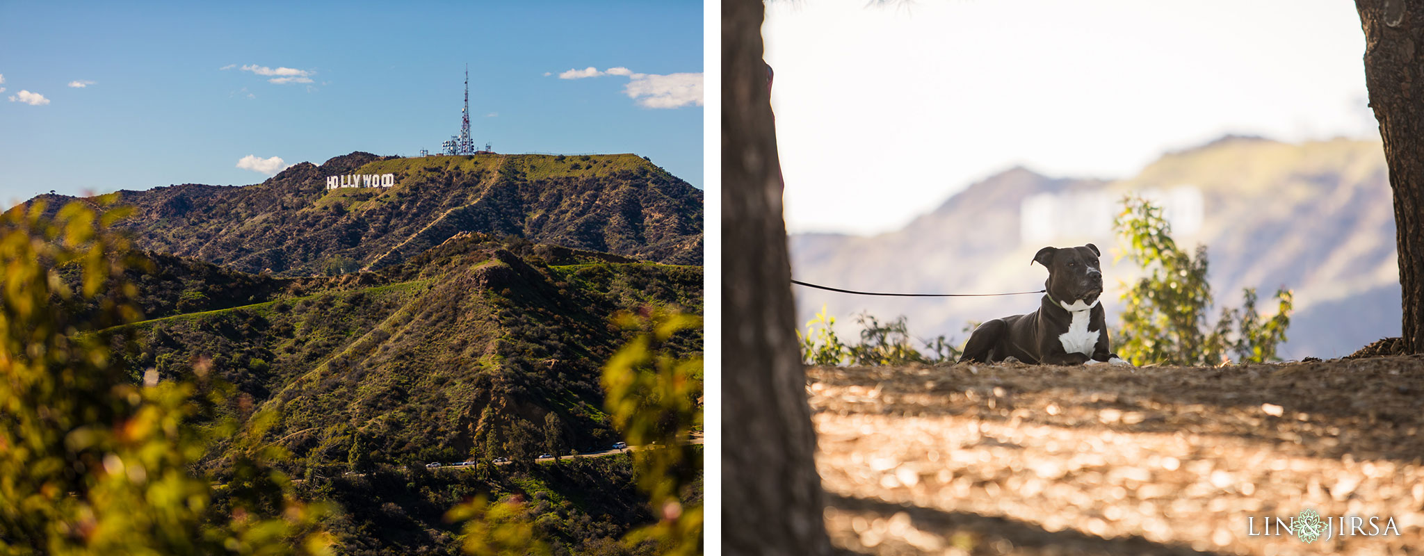01 griffith park los angeles engagement photography