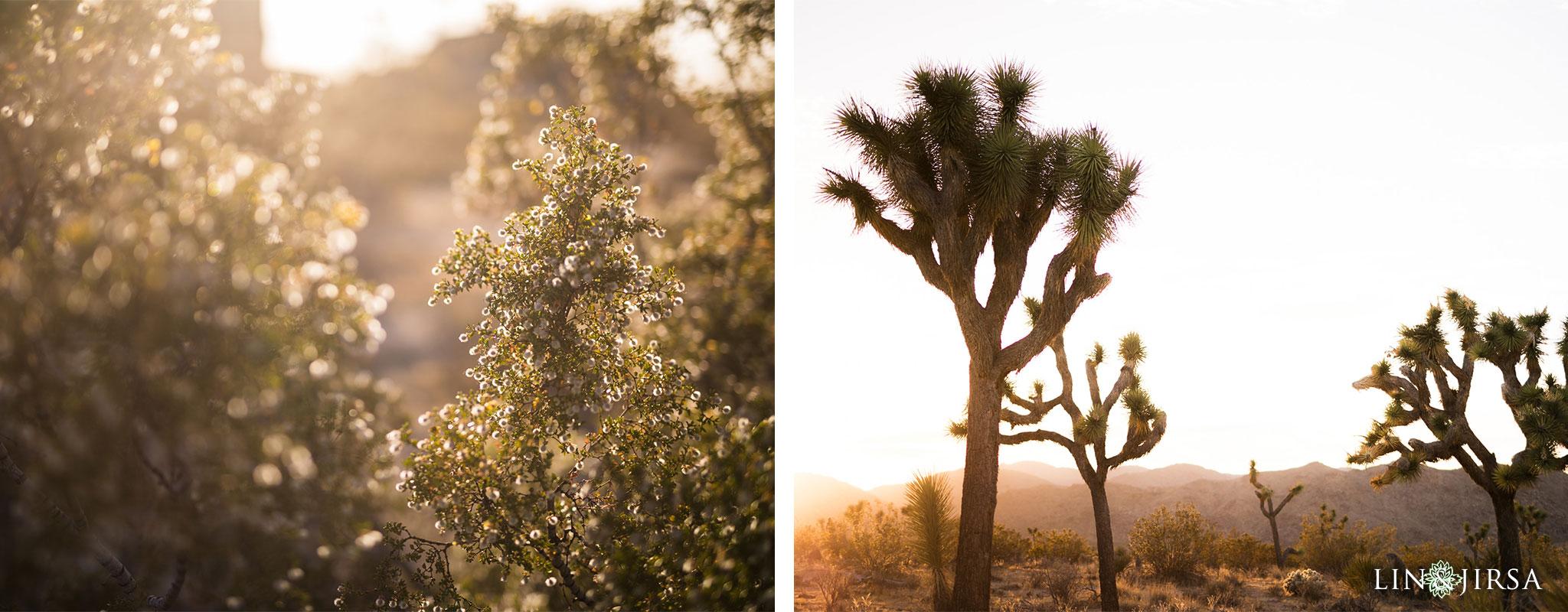 04 joshua tree national park desi engagement photography