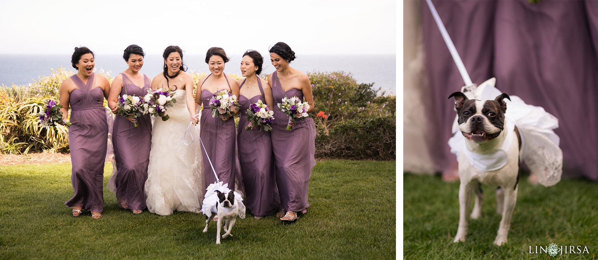 07 terranea resort rancho palos verdes wedding bridesmaids dog photography